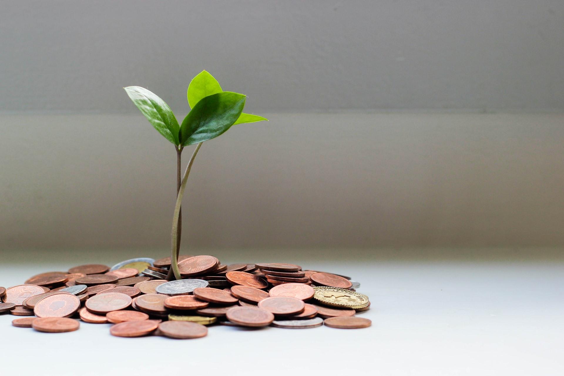 Fundraising: Come Arrivare al Primo Seed